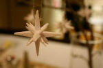 "The center piece was a vase with fake snow filled with dried branches.  These stars were hung on the ""winter tree"""